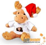 FI christmas_moose